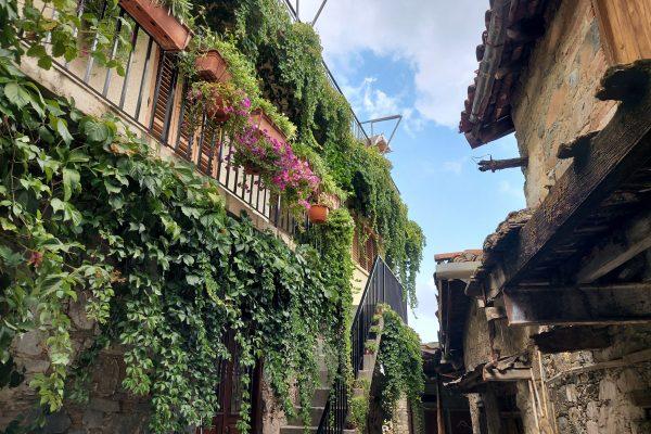 Askas village, Nicosia (5)